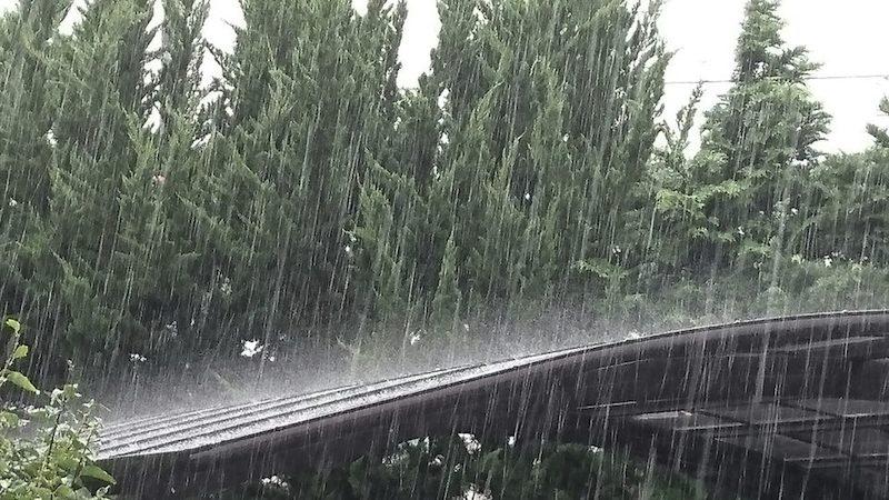 九州で激しい雨、新たな災害発生に注意現在の雨雲の様子▽宮崎県西都市(11:11)参考資料など