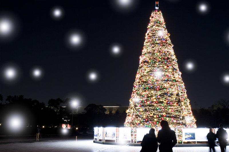 """今まで最も""""ホワイトクリスマス""""を実現していた都市は!? - ウェザー ..."""