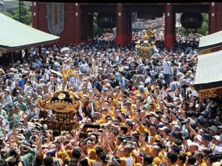 淺草三社祭從今日開始舉行