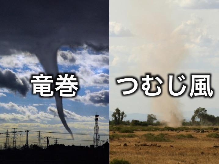 知ってる?つむじ風と竜巻の違い - ウェザーニュース