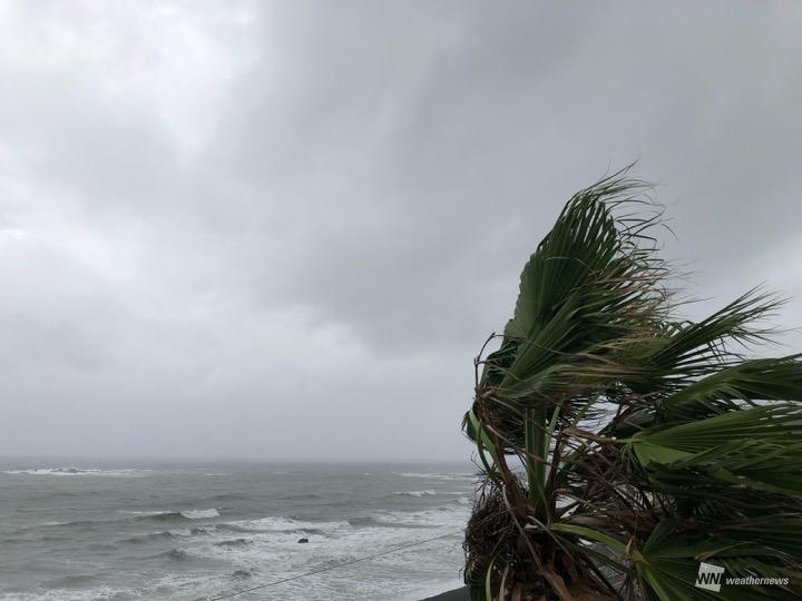 台風から離れた関東も強風注意 ...