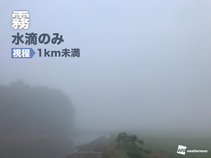 霧ともやの違いは「視程」にあり - ウェザーニュース