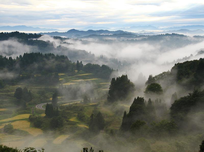 日本の美しい言葉 秋の風物詩「霧」 - ウェザーニュース