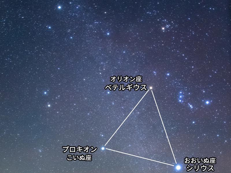 三角形 冬 星座 大 の
