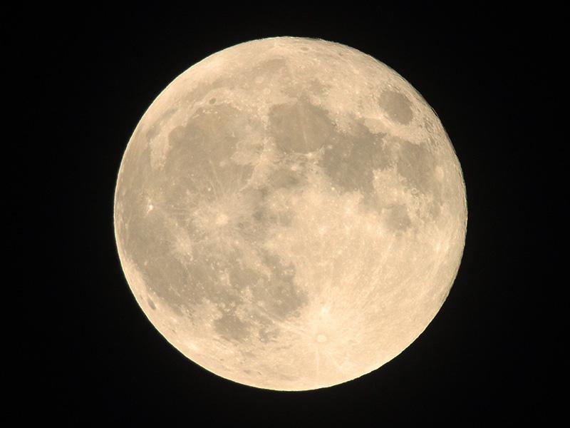 満月は「今夜」 1年で最も高く昇...
