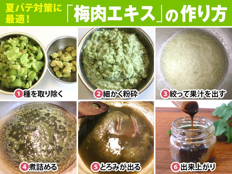 作り方 梅 肉 エキス