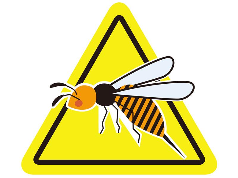 対処 蜂 の に 刺され た 時