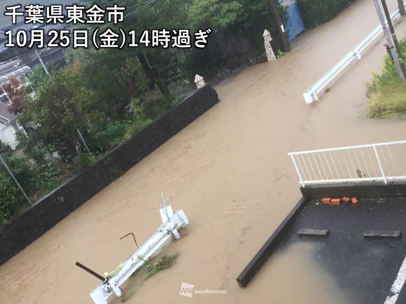 危険 利根川 水位 氾濫
