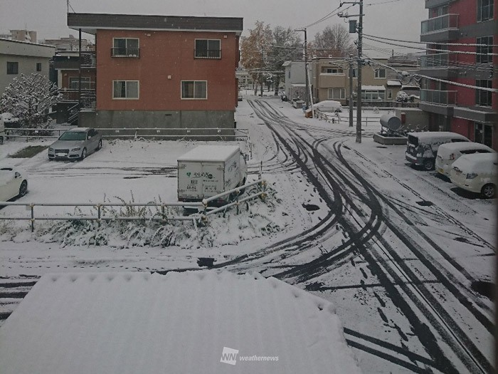 札幌 降雪 量