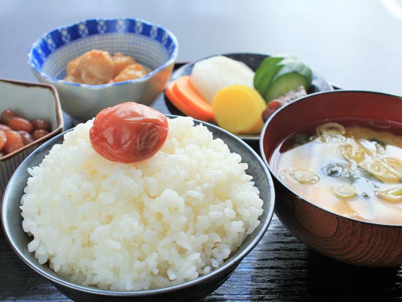 「日本食」の画像検索結果