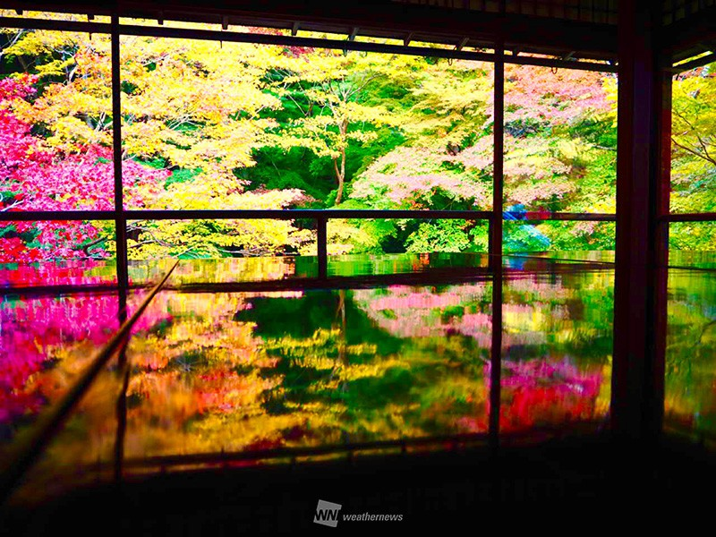 天気 予報 京都 市 左京 区