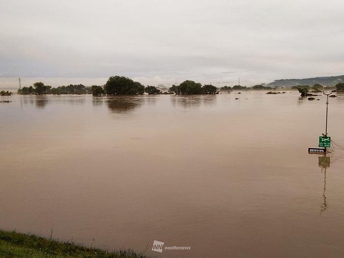 最 上川 氾濫 山形 日本農業新聞