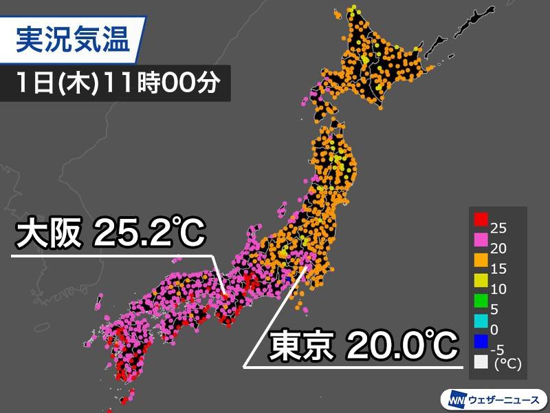 夏 日 2 月 東京