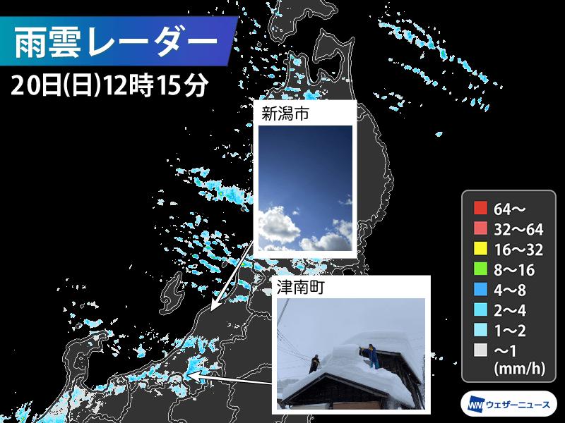 連日雪が続く新潟県 新潟市だけ晴れる理由は? - ウェザーニュース