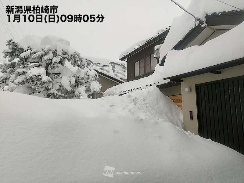 災害 大雪