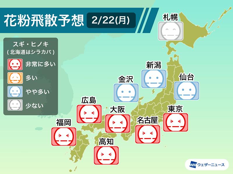 2月22日(月)の花粉飛散予想 連日の大量飛散に注意 東京や大阪など非常 ...